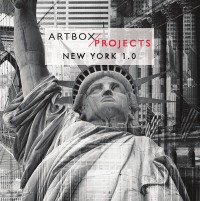 ARTBOX.PROJECT New York 1.0 - 5th - 16th March 2018 - Patricia Zenklusen